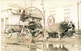 Enfants Romania- Zigeuner - Odobesti Focsani- Caineni Hermannstadt Braila ? -guerre 14/18-WWI Carte Photo Allemande - Roumanie
