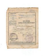 1 Rég De Tirailleurs Algériens - Documents