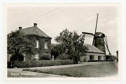 D370 - Roggel Bij Heythuysen Koppelstraat - Molen - Moulin - Mill - Mühle - Autres