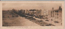 EGYPTE HELIOPOLIS VUE D'AVENUE DES PYRAMIDES  CARTE 6 X 14 CENTIMÈTRES - Egypt