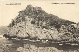 83 -  PORQUEROLLES -   Presqu' Ile Du Breganconnet   249 - Porquerolles