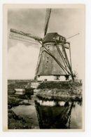 D377 - Texel Oost Molen Het Noorden - Molen - Moulin - Mill - Mühle - Texel
