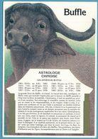 ASTROLOGIE CHINOISE - Buffle - Astrology
