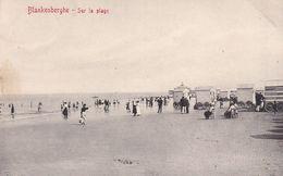 620 Blankenberghe Sur La Plage - Blankenberge