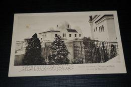 17033-            INSTITUT MUSULMAN,  MOSKEE  MOSQUE  MOSQUÉE DE PARIS, UN COIN DU HAMMAM - Islam