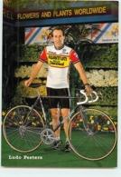Ludo PEETERS . 2 Scans. Cyclisme. Kwantum Decosol 1985 - Radsport