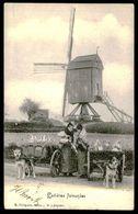 BELGIQUE - Attelage De Chiens - Laitières Flamandes Et Moulin à Vent. (Ed. E. Grègoire Série 2 Nº 3 Déposé)carte Postale - Artisanat
