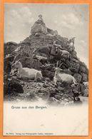 Switzerland 1900 Postcard - Suisse