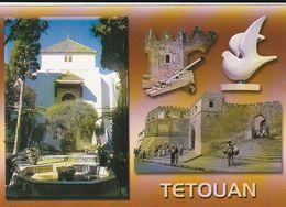 Carte Postale. Maroc. Tétouan.  Portes. Murailles. Fontaines. - Monuments