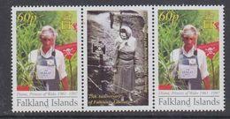 Falkland Islands 2007 Princess Diana, Anti-mining 1v  Gutter ** Mnh (48498B) - Falkland Islands