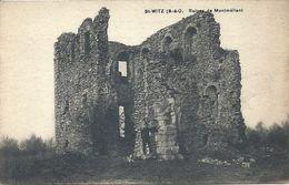2020 - 07 - VAL D'OISE - 95 - SAINT WITZ - Ruines De Montmélian - Saint-Witz