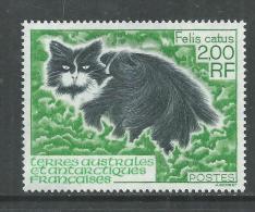 T.A.A.F. N° 186  XX  Faune Des Kerguelen : Le Chat Sans Charnière, TB - Unclassified