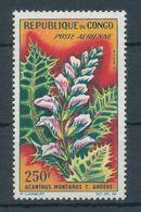1963. Congo - Plants - Végétaux