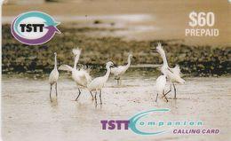 Trinidad & Tobago, TT-C&W-PRE-E001, Dancing Egrets, Birds, 2 Scans. - Trinité & Tobago