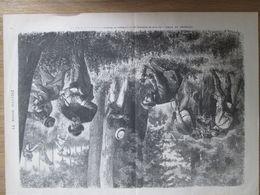 Gravure  1873  ENVIRONS DE PARIS Les Lecons De BOTANIQUE    Par Un Professeur Du MUSEUM   Nature Ecologie   Plantes - Estampes & Gravures