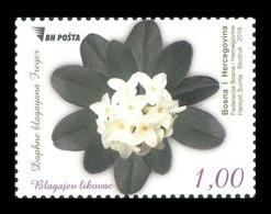 Bosnia And Herzegovina 2019 Mih. 784 Flora. Daphne Blagayana MNH ** - Bosnia Herzegovina