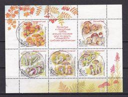 Russland - 2003 -  Michel Nr. Block 61 - Gest. - 1992-.... Federation