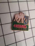 415a Pin's Pins / Beau Et Rare / THEME : MEDIAS / CHEVAL MAGAZINE - Médias