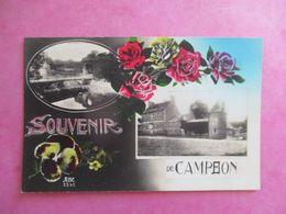 CPA 44 FANTAISIE SOUVENIR DE CAMPBON 2 VUES FLEURS ROSES PENSÉE - France