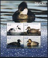 Bloc Sheet Oiseaux Canards Birds Ducks Neuf  MNH **  St Vincent Grenadines  2015 - Ducks
