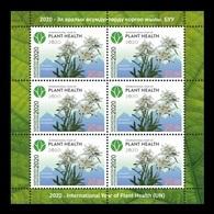 Kyrgyzstan 2020 Mih. 994 International Year Of Plant Health. Flora. Flowers (M/S) MNH ** - Kyrgyzstan