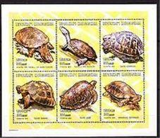 Madagascar - 2001- Tuetles - Yv 1226G/M - Turtles
