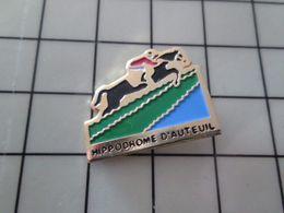 415c Pin's Pins / Beau Et Rare / THEME : ANIMAUX / CHEVAL HIPPISME HAIES COURSE HIPPODROME DE DANIEL AUTEUIL - Animaux