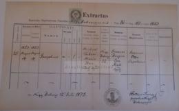 D172604  Old Document -  SLOVAKIA  Nagybobróc   Bobrovec Zilina- 1875 Josephus Tabori - Maria HAN -Petrus Árvay Parochus - Nacimiento & Bautizo