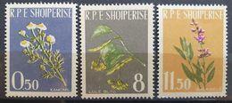"""Albanien 1962, """"Heilpflanzen"""" Mi 654-56, MNH Postfrisch - Albania"""