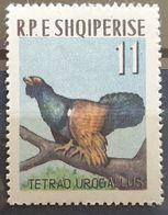 """Albanien 1963, """"Vögel"""" Mi 744, Höchstwert MNH Postfrisch - Albania"""
