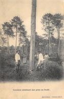 Landais Abbatant Des Pins En Forêt - Ohne Zuordnung