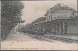 Coulommiers , Train En Gare , Animée - Coulommiers