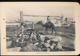Photogravure MAROC --  Une Noria Marocaine  ( Cliche Chelles )   Dim 11 Cm X 16 Cm - Photographie