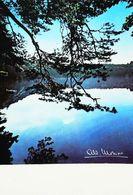 Photo  Albert Monier Le Lac Pavin  Besse En Chandesse - Monier