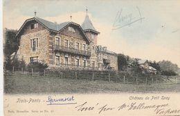 TROIS-PONTS - Château Du Petit Spay - Nels, Série 20, N° 58 , Colorisée - Trois-Ponts