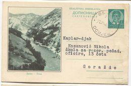 DRINA, GORAŽDE - BOSNIA AND HERZEGOVINA, ILLUSTRATED POSTAL CARD, Year 1938 - Bosnie-Herzegovine