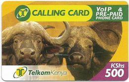 Kenya - Telkom Kenya - Buffaloes, Exp. 19.07.2008, Remote Mem. 500KShs, Used - Kenya