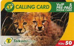 Kenya - Telkom Kenya - Cheetahs, Exp. 14.09.2009, Remote Mem. 50KShs, Used - Kenya