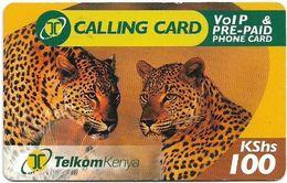 Kenya - Telkom Kenya - Leopards, Exp. 13.04.2009, Remote Mem. 100KShs, Used - Kenya
