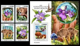SIERRA LEONE 2020 - Year Of Plant Health, Mushrooms 4v + S/S Official Issue [SRL200204] - Hongos