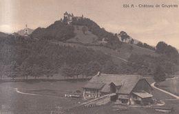 198 - Château De Gruyères - Altri