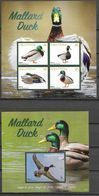 ANTIGUA AND BARBUDA, 2020, MNH, BIRDS, DUCKS, MALLARD DUCK,   SHEETLET+S/SHEET, HIGH FV - Ducks