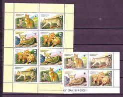 Tajikistan 2002 MiNr. 208 - 211 Tadschikistan  Cats Of Prey Jungle Cat WWF 4v (white Margins) + M/sh (colored Margins) - W.W.F.