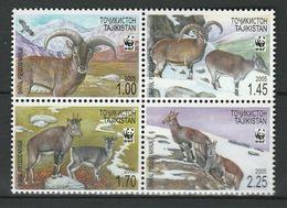 Tajikistan 2005 Mi.No. 392 - 395 Tadschikistan ANIMALS Mammals Bharal WWF 4v  MNH** 7,50 € - W.W.F.