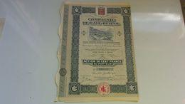 LAIT BERNA (1925) - Hist. Wertpapiere - Nonvaleurs
