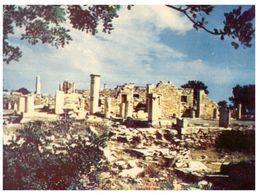 (C 7) Cyprus - Limassol Apollo Temple - Cyprus