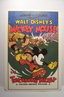 WALT  DISNEY - MICKEY  MOUSE  - RUGBY   - ( Pas De Reflet Sur L'original ) - Disney