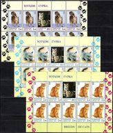 Tajikistan 2013 MiNr. 614 - 616  Tadschikistan Cats Pets ANIMALS 3 M\sh MNH** 65,00 € - Tadjikistan