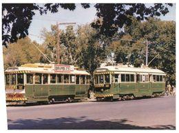 (C 9) Tramway - Ballarat - VIC - Australia - Tramways