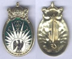 Insigne Du 13e Régiment De Dragons Parachutistes - Army